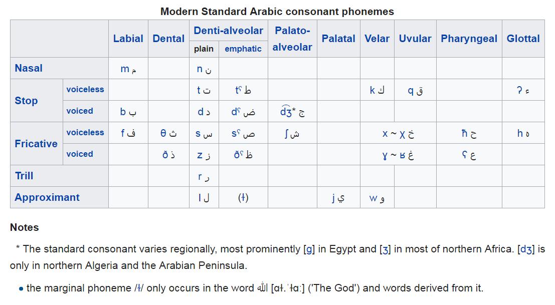 Modern Standard Arabic consonant phonemes